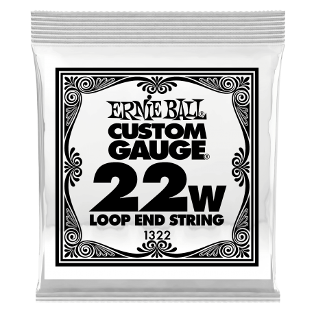 Ernie Ball Single 022w Banjo, Mandolin or Dulcimer Loop End Wound Steel String P01322