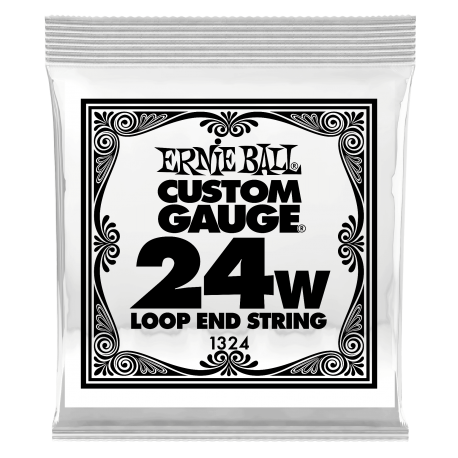 Ernie Ball Single 024w Banjo, Mandolin or Dulcimer Loop End Wound Steel String P01324